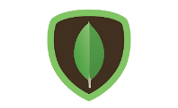 MongoDB Consulting Services